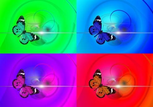 butterfly-436706_1920