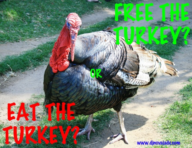 turkey-180593_1280